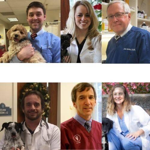 Mclean Animal Hospital Doctors