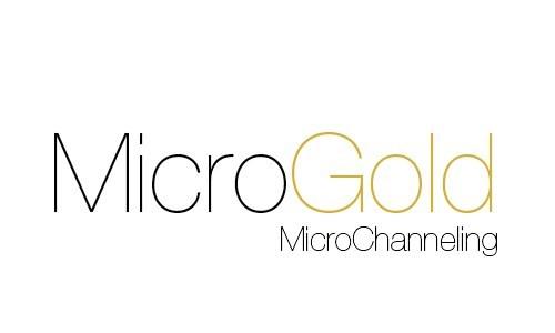 microgold-LOGO-500x300