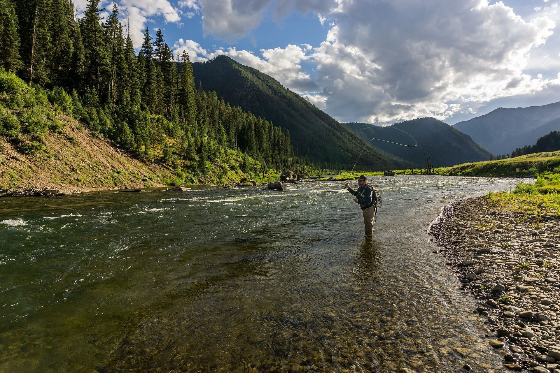 Madison River Fly Fishing - Fly Fishing Photography