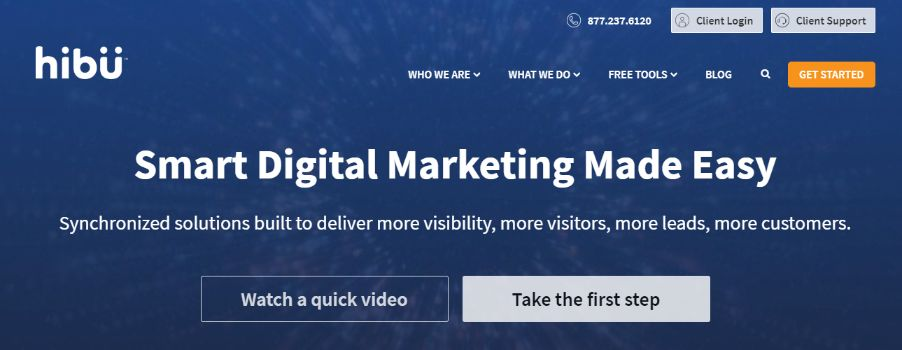 Professional Digital Marketers will take care of everything about your website development