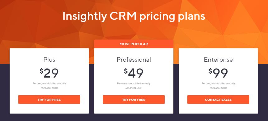Insightly crm pricing model