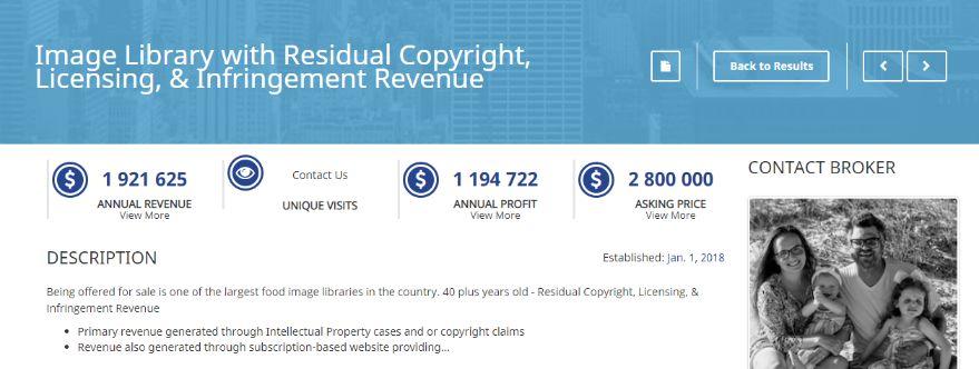 clear digital asset profile including profit, revenue, expenditure, monthly traffic, etc.