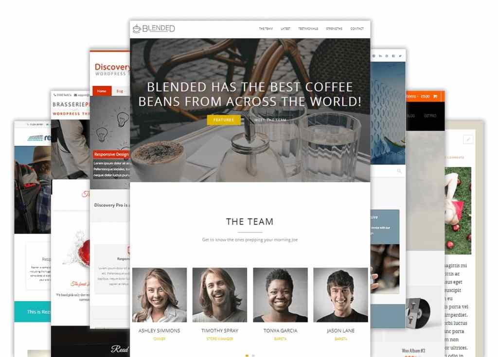 Responsive WordPress themes are the perfect way to build customizable professional website or blog without knowing anything about coding