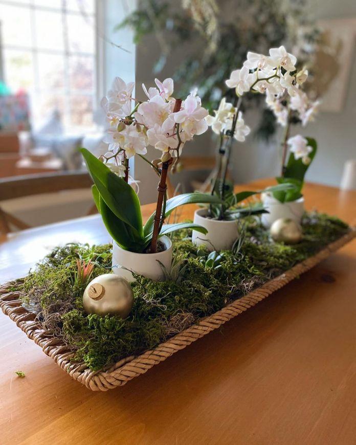 cliomakeup-centrotavola-natale-5-orchidee