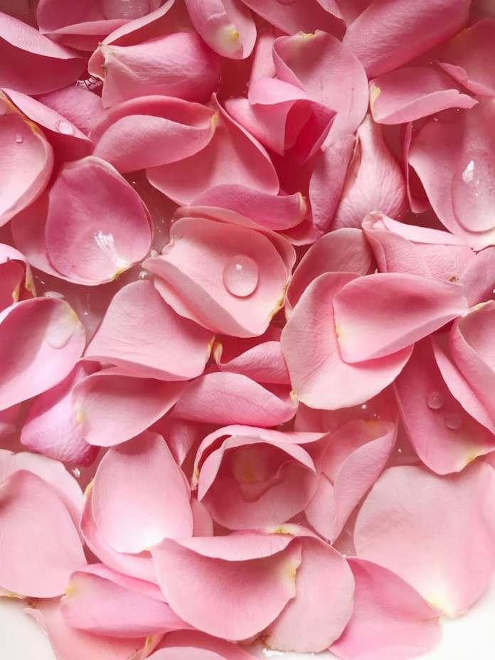 cliomakeup-zampe-di-gallina-9-acqua-rose