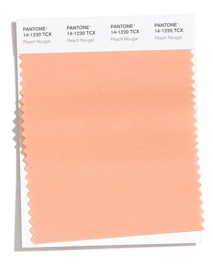 cliomakeup-pantone-colori-autunno-inverno-2020-2021-8-peach-nougat