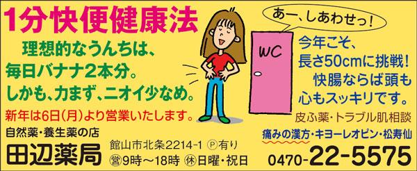 CL340_田辺薬局