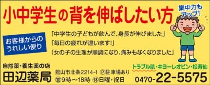 CL366_田辺薬局