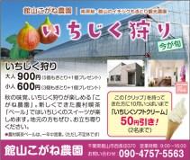 CL380_館山こがね農園
