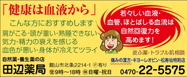 CL381_田邉薬局