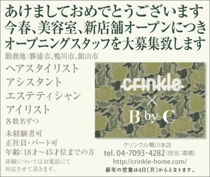 CLIP386_クリンクル