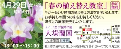 CL393大場蘭園_1コマ