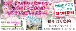 416_kamogawa_harikyu