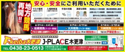 493fkeiba_kisarazu