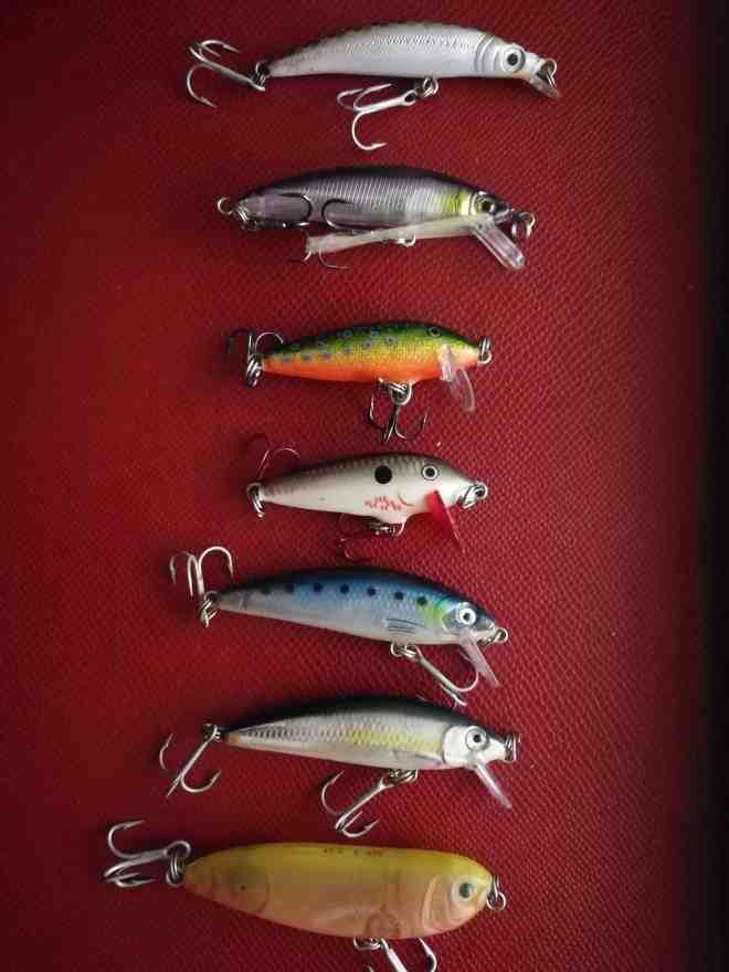 piccolissimi jerck per la pesca al persico con WTD
