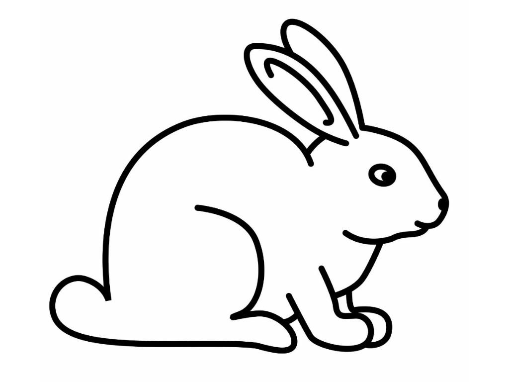 Black And White Rabbit Drawing Rabbit Black And White