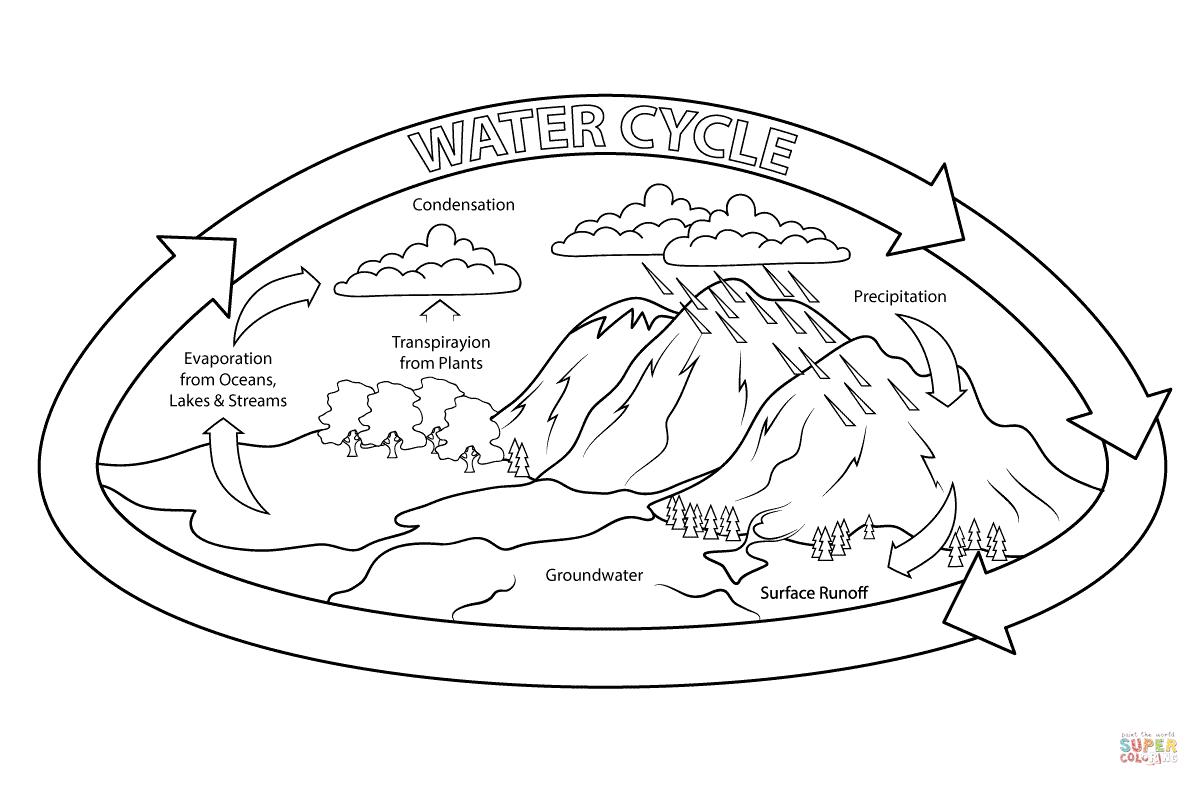 31 Water Cycle Coloring Worksheet
