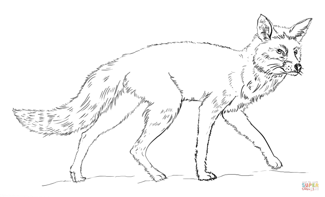 Free Fox Coloring Page Download Free Clip Art Free Clip Art On Clipart Library