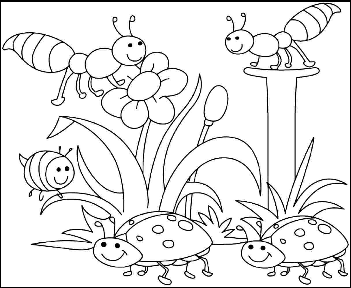 Free Printable Spring Coloring Pages Kindergarten