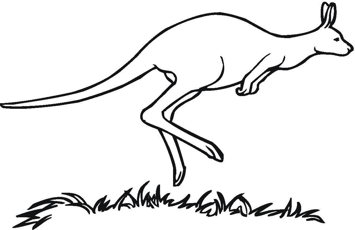 Free Kangaroo Cliparts Download Free Clip Art Free Clip