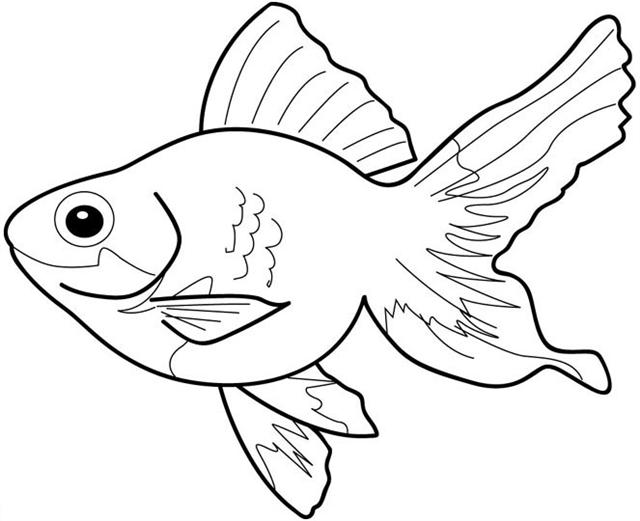 student coloring of a fish pages elronet com