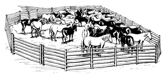 Free Corral Cliparts Download Free Clip Art Free Clip