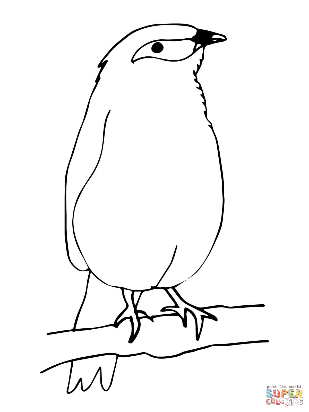 Free Mynah Bird Cliparts Download Free Clip Art Free