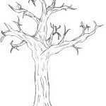 Free Simple Tree Drawings Download Free Clip Art Free Clip Art On Clipart Library