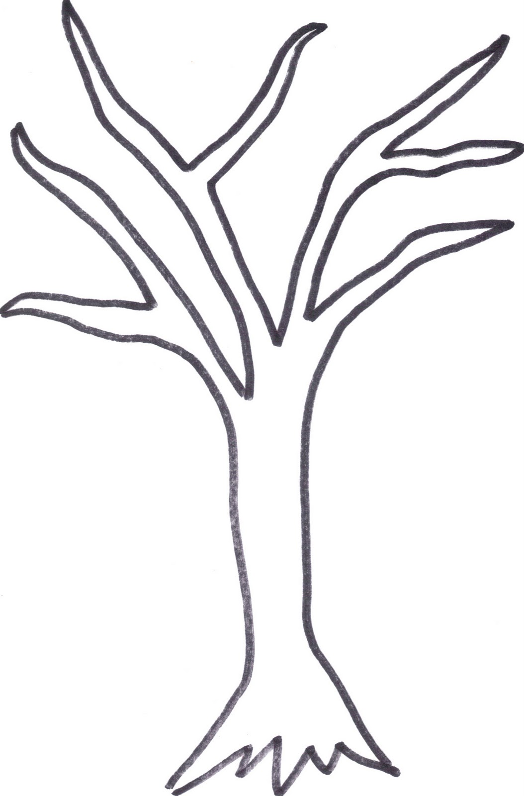 Free Tree Drawing Outline Download Free Clip Art Free Clip Art On Clipart Library