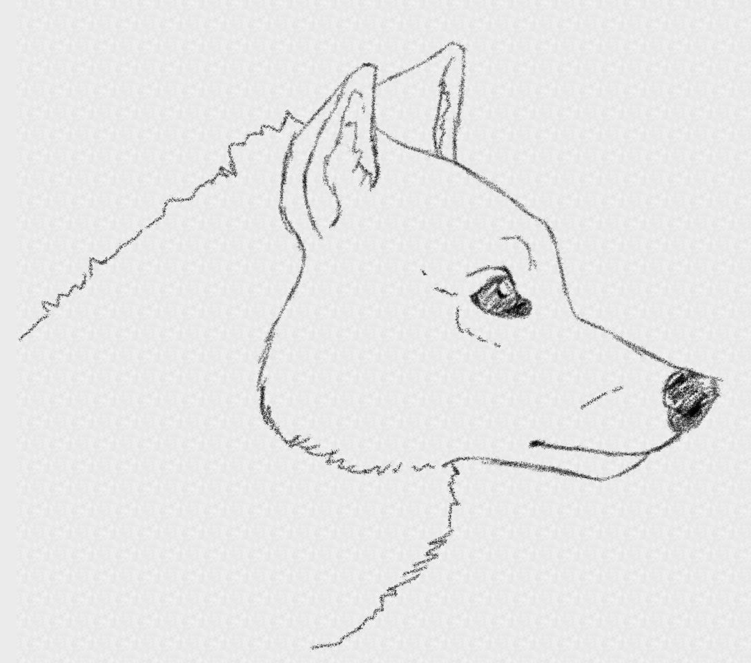 Free Easy Wolf Drawings Download Free Clip Art Free Clip
