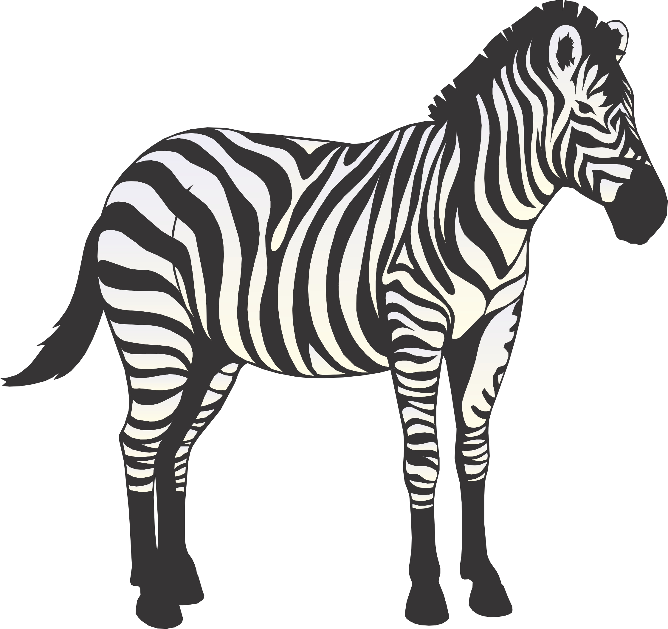 Zebra Cartoon Black And White
