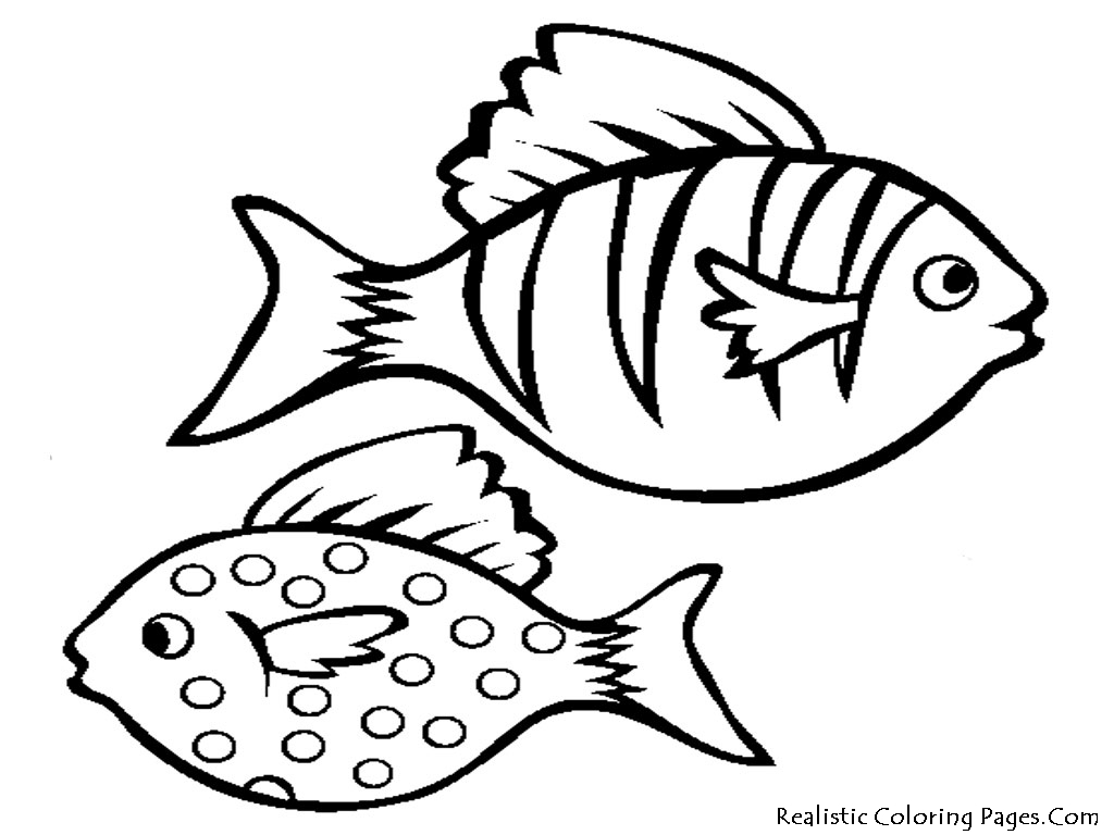 Free Simple Fish Drawing For Kids Download Free Clip Art Free Clip Art On Clipart Library