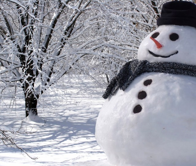 The Science Behind Building The Perfect Snowman Stemjobs