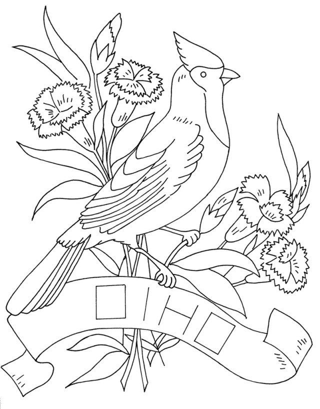 ohio state bird drawing - Clip Art Library