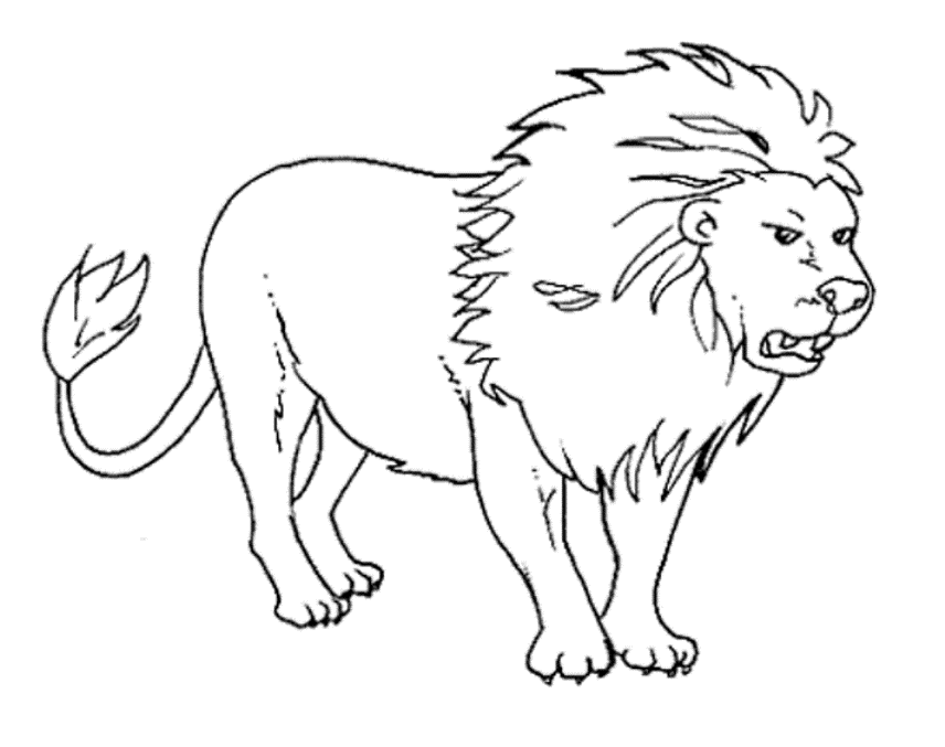 Free Lion Outline Png Download Free Clip Art Free Clip Art On Clipart Library