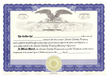 Interest Certificate Template