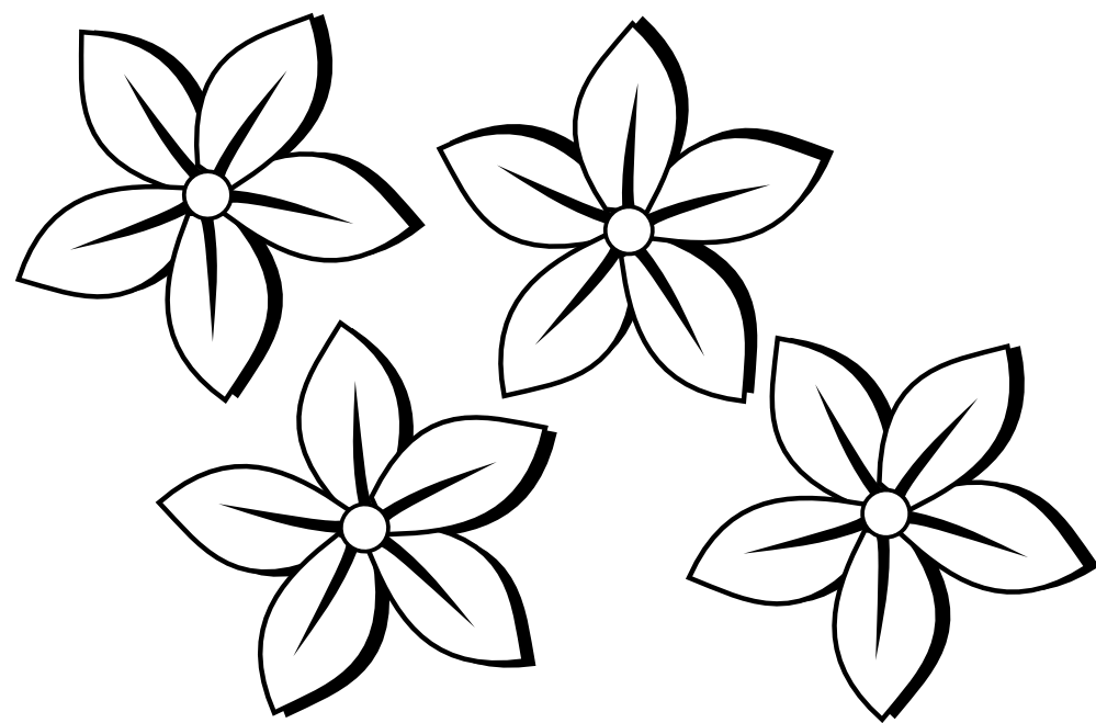 Simple Flower Drawings In Black And White Widescreen 2 HD