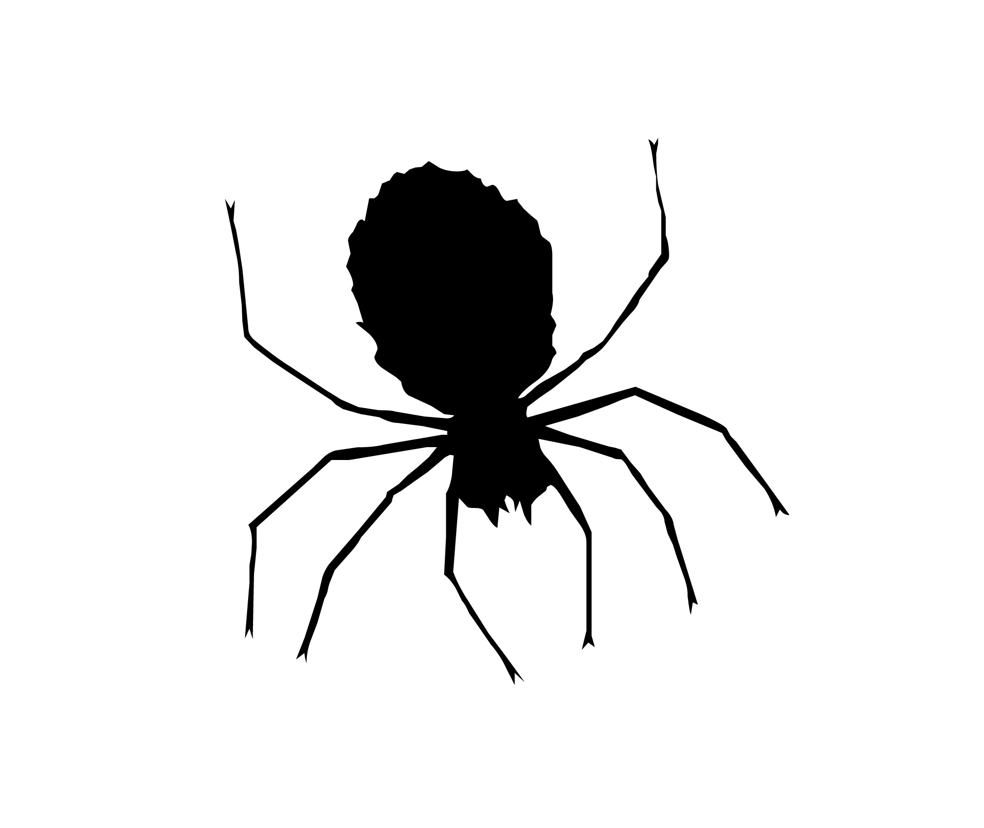 Spider Web Clip Art Black And Clipart Library