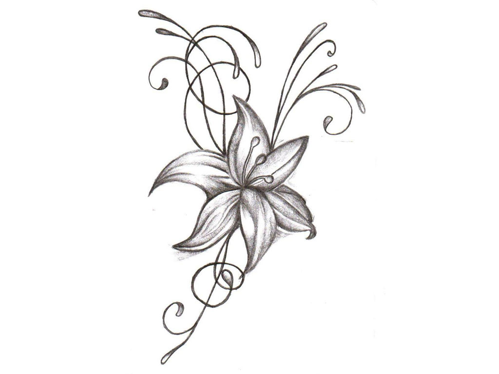 Free Pictures Of Flower Drawings Download Free Clip Art