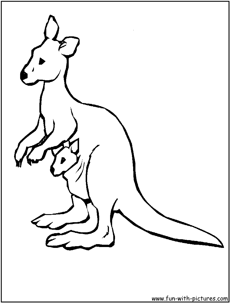 Kangaroo Coloring Pages For Kids 61 Free Printable Coloring