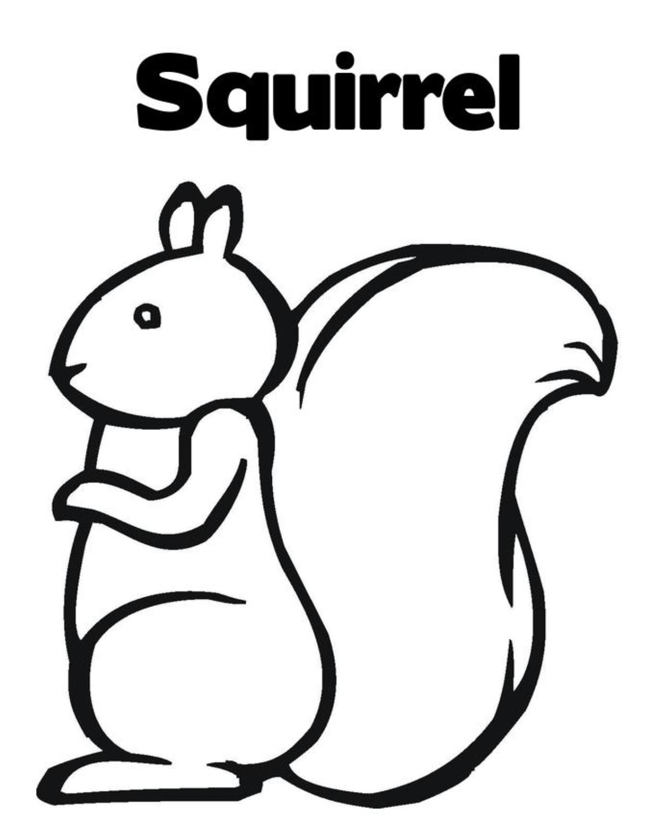 Free Squirrel Pictures To Print Download Free Clip Art