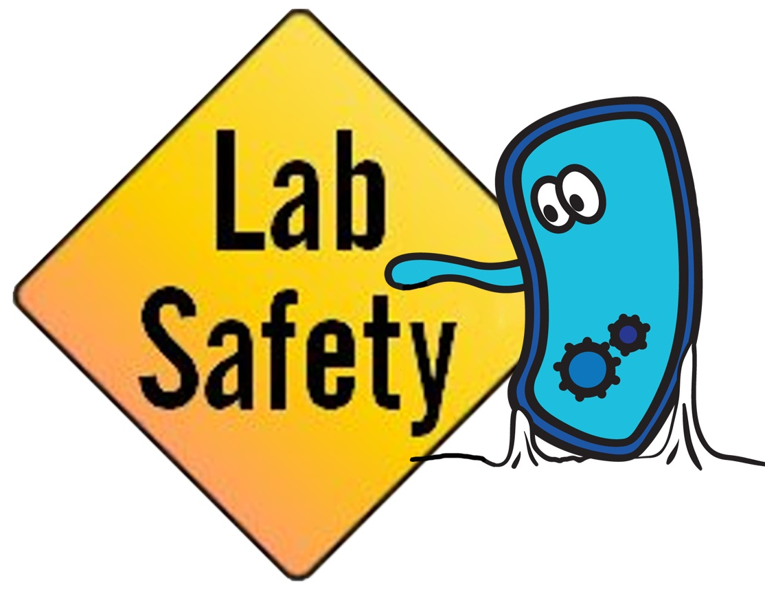 Free Science Safety Download Free Clip Art Free Clip Art