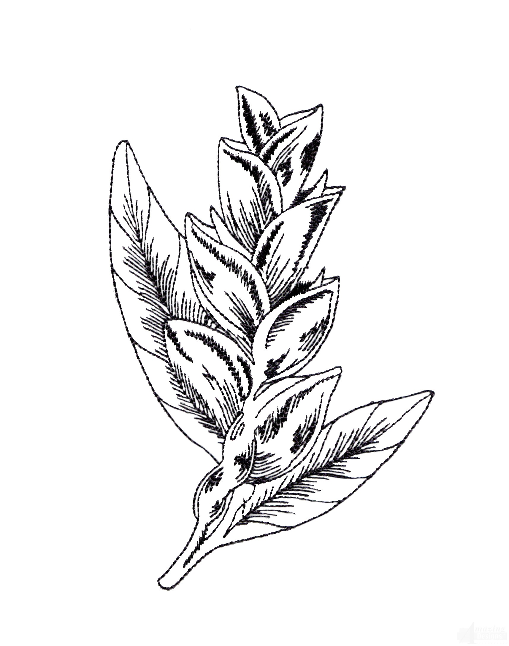 Free Tropical Flower Drawings Download Free Clip Art