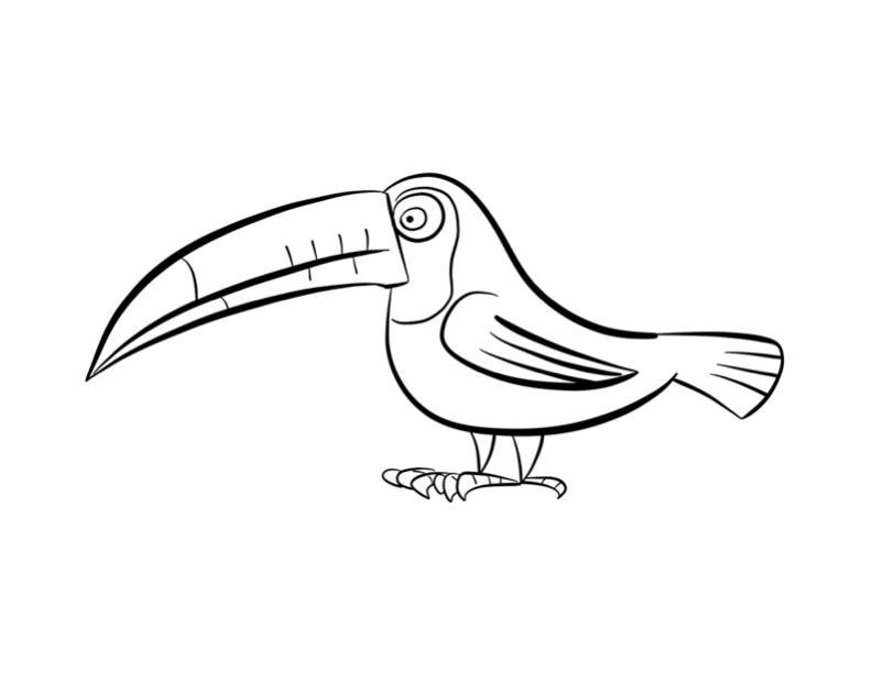 free toucan outline download free clip art free clip art