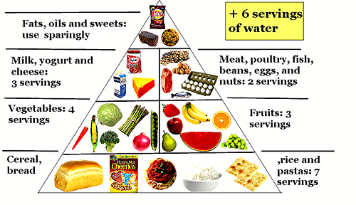 Free Balanced Diet Chart Download Free Clip Art Free Clip Art On Clipart Library
