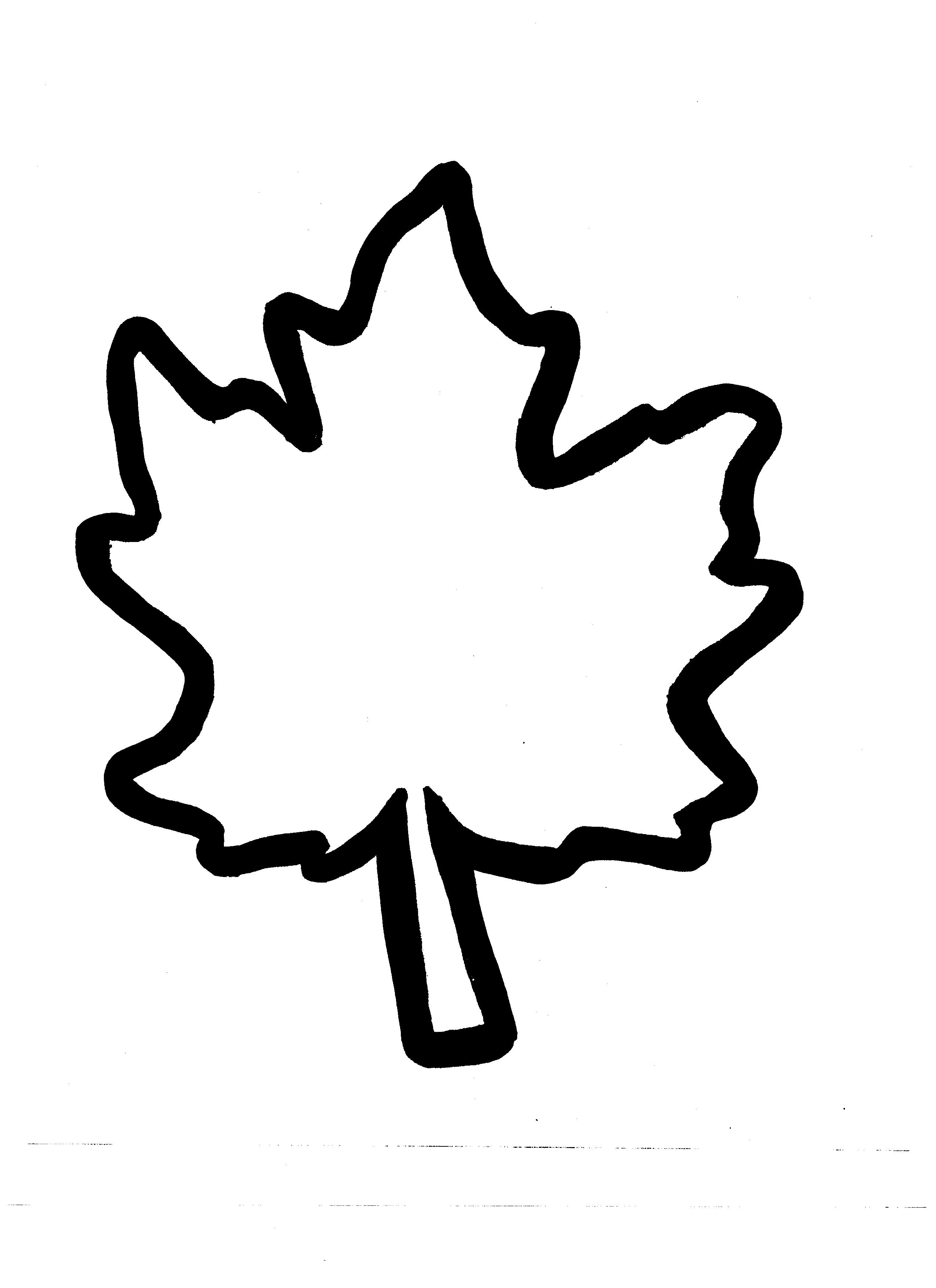 Free Autumn Leaf Outline Download Free Clip Art Free