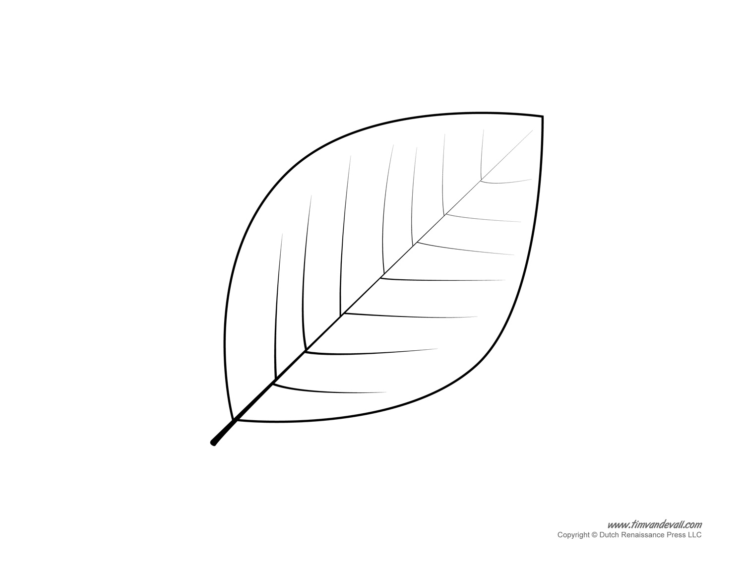 Free Leaf Template Download Free Clip Art Free Clip Art On Clipart Library