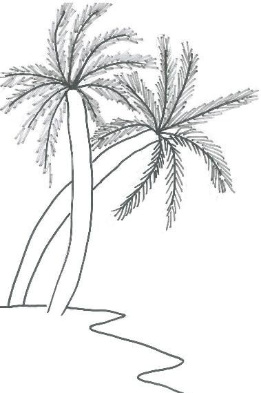 Art And Drawing For KidsHow To Draw A Coconut Tree