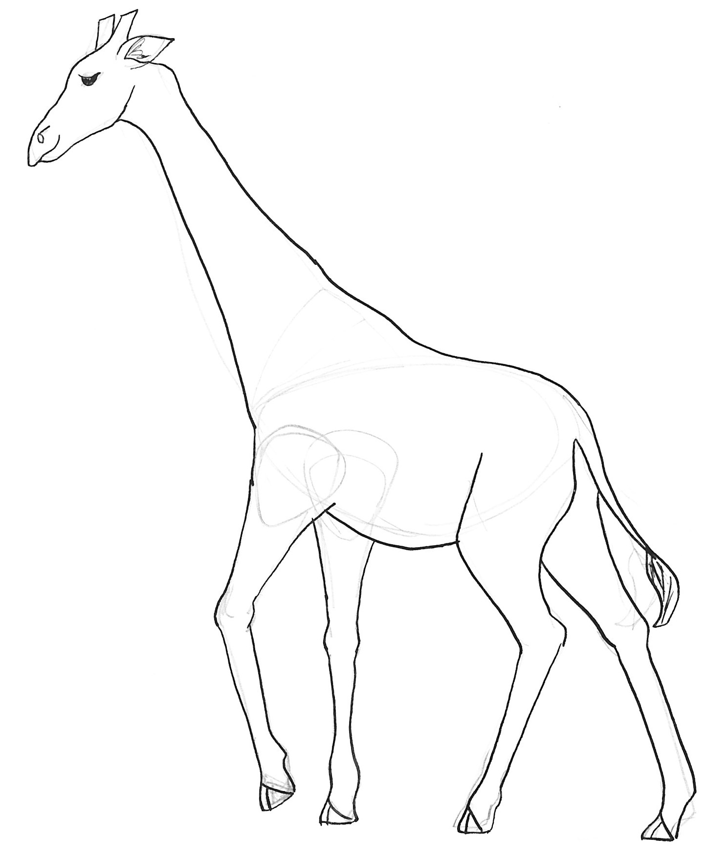 Free Coloring Pages Of Giraffe To Draw