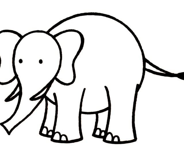 Elephant Drawing Free Large Images